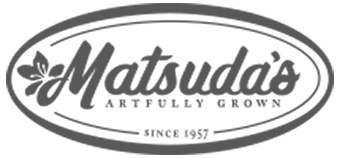 Matsuda's Nursery